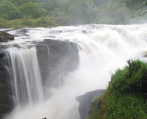 murchision-falls