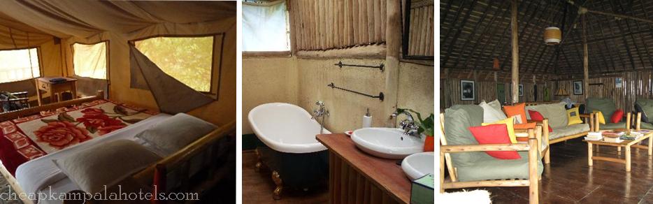 gorilla-resort-bwindi